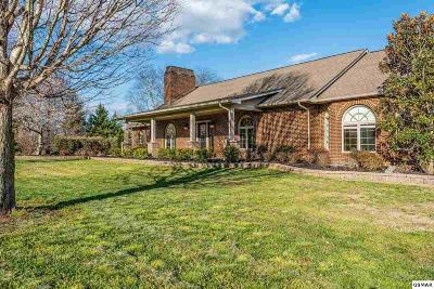 Sevier County Single Family Home For Sale: 215 Foothills Drive
