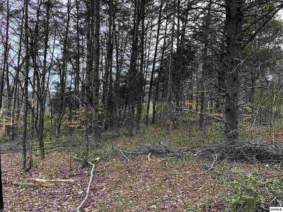 Sevierville Residential Lots & Land For Sale: Lot# 72 Big Chiefs Skyview Drive