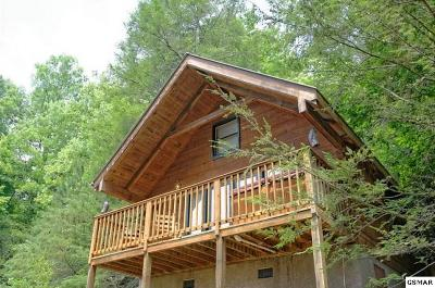 Gatlinburg Single Family Home For Sale: 527 Patterson Lane