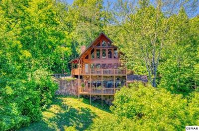 Gatlinburg Single Family Home For Sale: 1120 Condo Drive