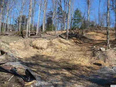 Sevierville Residential Lots & Land For Sale: Lot #24 Pleasant View Lane