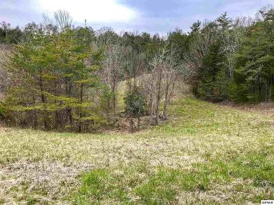 Sevierville Residential Lots & Land For Sale: Lot 6 Debras Way