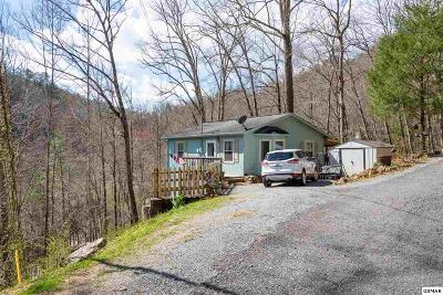 Pigeon Forge Single Family Home For Sale: 375 Sugar Mountain Way