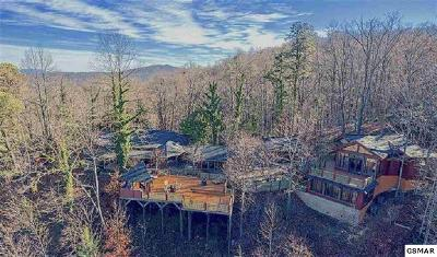 Gatlinburg Single Family Home For Sale: 646 Jefferson Road