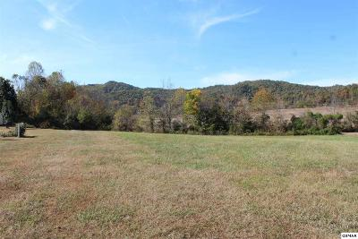 Sevierville Residential Lots & Land For Sale: Lot Lot 10 Autumn Woods Ln