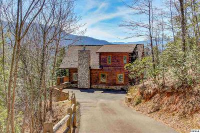 Gatlinburg Single Family Home For Sale: 3902 Duck Hollow Road