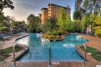 Pigeon Forge Condo/Townhouse For Sale: 212 Dollywood Ln. Unit 419