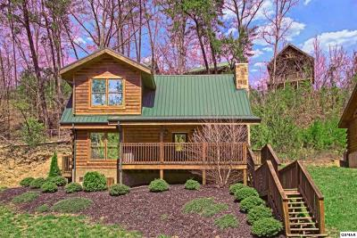 Pigeon Forge Single Family Home For Sale: 621 Chickasaw Gap Way