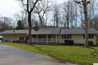 Sevierville Single Family Home For Sale: 224 Hemlock Ct