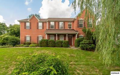 Knoxville Single Family Home For Sale: 618 Blue Herron Rd