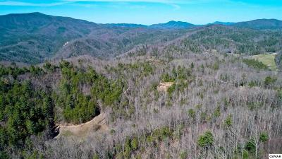 Cocke County Residential Lots & Land For Sale: 17 Acres Dogwood Stand Rd