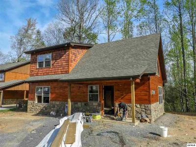 Gatlinburg Single Family Home For Sale: 534 Johnson Lane