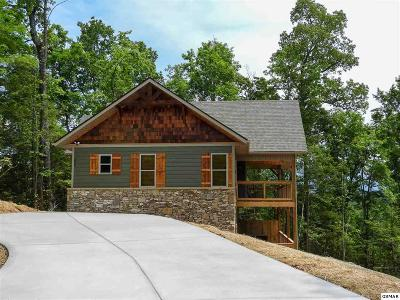 Gatlinburg Single Family Home For Sale: 408 Potters Ridge Rd