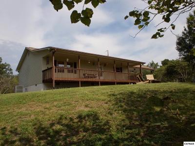 Sevierville Single Family Home For Sale: 559 Cedar Top Dr
