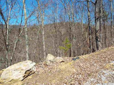 Residential Lots & Land For Sale: Lots 60e & 61e Redtail Road