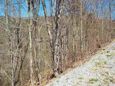 Residential Lots & Land For Sale: Lot 61e Redtail Road