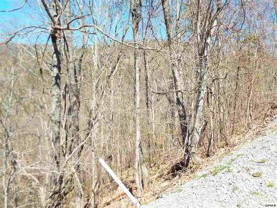 Residential Lots & Land For Sale: Lot 60e Redtail Road