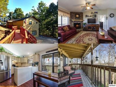 Pigeon Forge Single Family Home For Sale: 742 Lloyd Huskey