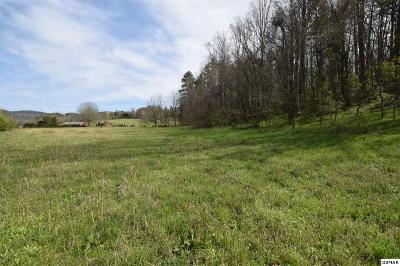Residential Lots & Land For Sale: E Lamar Alexander Pkwy