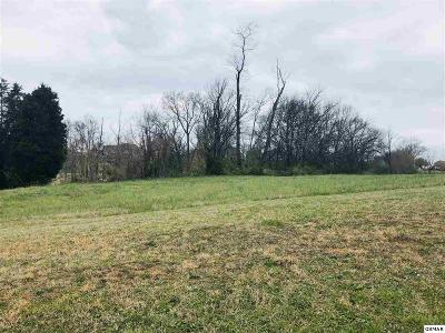 Jefferson City Residential Lots & Land For Sale: 533 Providence Drive