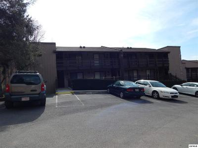 Sevierville Condo/Townhouse For Sale: 1081 Cove Rd U534