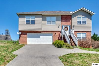 Seymour Single Family Home For Sale: 520 N Pitner Rd