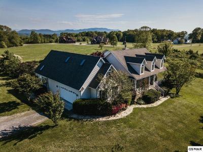 White Pine Single Family Home For Sale: 3549 Mountain View Lane