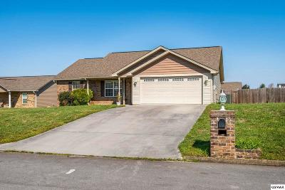 Sevierville Single Family Home For Sale: 2428 Frost Valley Court