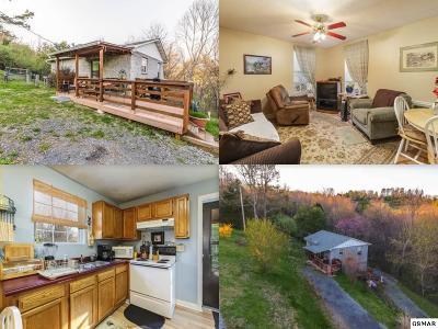 Kodak Single Family Home For Sale: 424 Hayes Drive