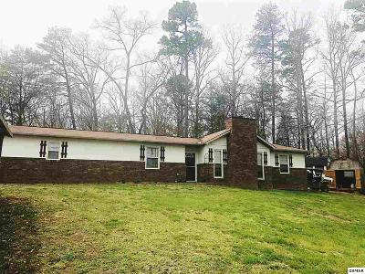 Sevier County Single Family Home For Sale: 516 Basswood Ln