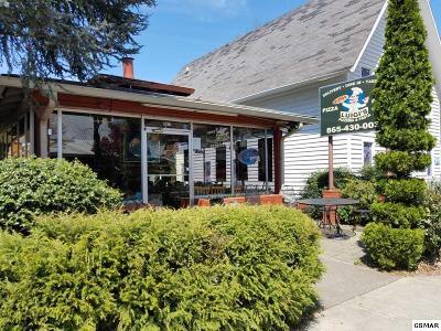 Gatlinburg Commercial For Sale: 1017 Parkway
