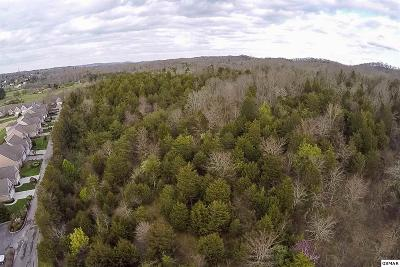 Sevier County Residential Lots & Land For Sale: N N Shiloh Rd