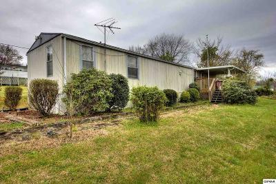 Kodak Single Family Home For Sale: 3559 Jeff Ln.