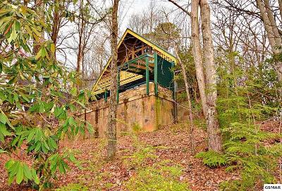 Gatlinburg Single Family Home For Sale: 2131 Luzerne Drive