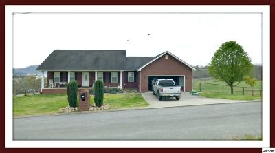 Rutledge Single Family Home For Sale: 337 Pocahontas Ln.