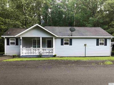 Dandridge Single Family Home For Sale: 1633 Muddy Creek