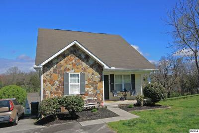 Sevierville Single Family Home For Sale: 1118 Ernest McMahan Road