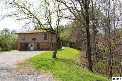 Sevierville Single Family Home For Sale: 3405 Lillie Blvd