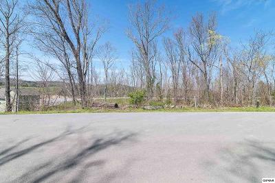 Sevierville TN Residential Lots & Land For Sale: $14,900
