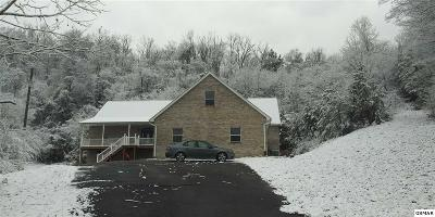 Sevierville Single Family Home For Sale: 1739 Chapman Hwy