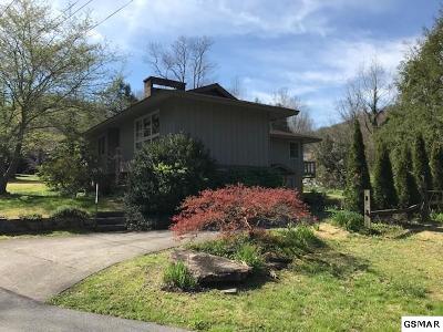 Gatlinburg TN Single Family Home For Sale: $315,000