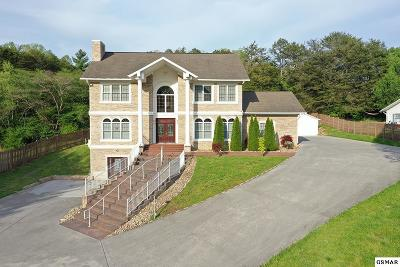 Pigeon Forge Single Family Home For Sale: 525 Kings Hills Blvd