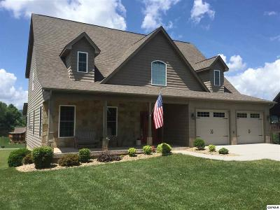 Sevierville Single Family Home For Sale: 3437 Cove Meadows Dr