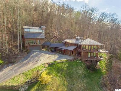 Sevierville Single Family Home For Sale: 3841 Thomas Cross Rd