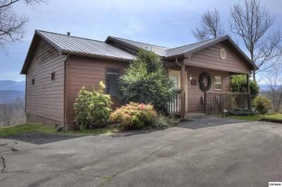Gatlinburg Single Family Home For Sale: 925 Boyd Boulevard