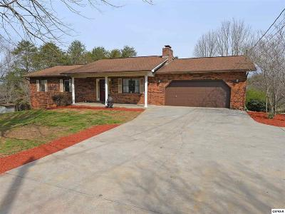Sevierville Single Family Home For Sale: 2050 Allenridge Dr