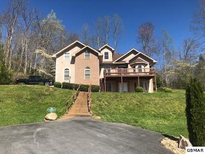 Gatlinburg Single Family Home For Sale: 239 Proffitt Rd