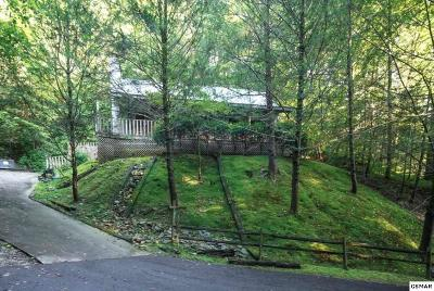 Gatlinburg Single Family Home For Sale: 1042 Cheshire Ct