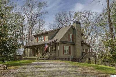 Sevierville Single Family Home For Sale: 2344 Thunder Mtn Rd