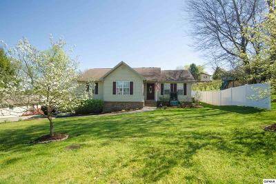 Kodak Single Family Home For Sale: 141 Huffaker Rd.